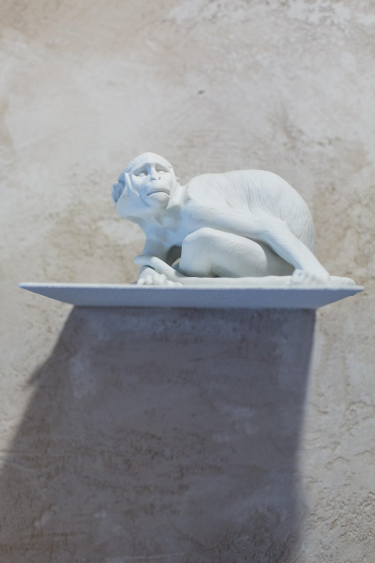 Designed by Theodor Kärner in 1906, this young monkey emphasizes the wealth of detail and depth of subtlety offered by white biscuit porcelain.   Material: White biscuit porcelain.