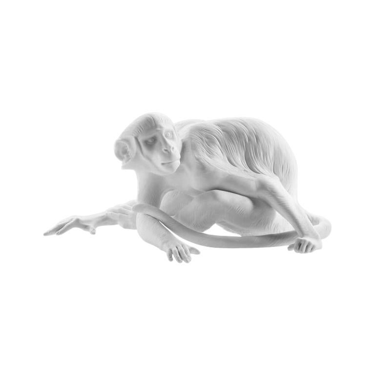 Monkey Animal Figure in White Biscuit Porcelain by Nymphenburg For Sale