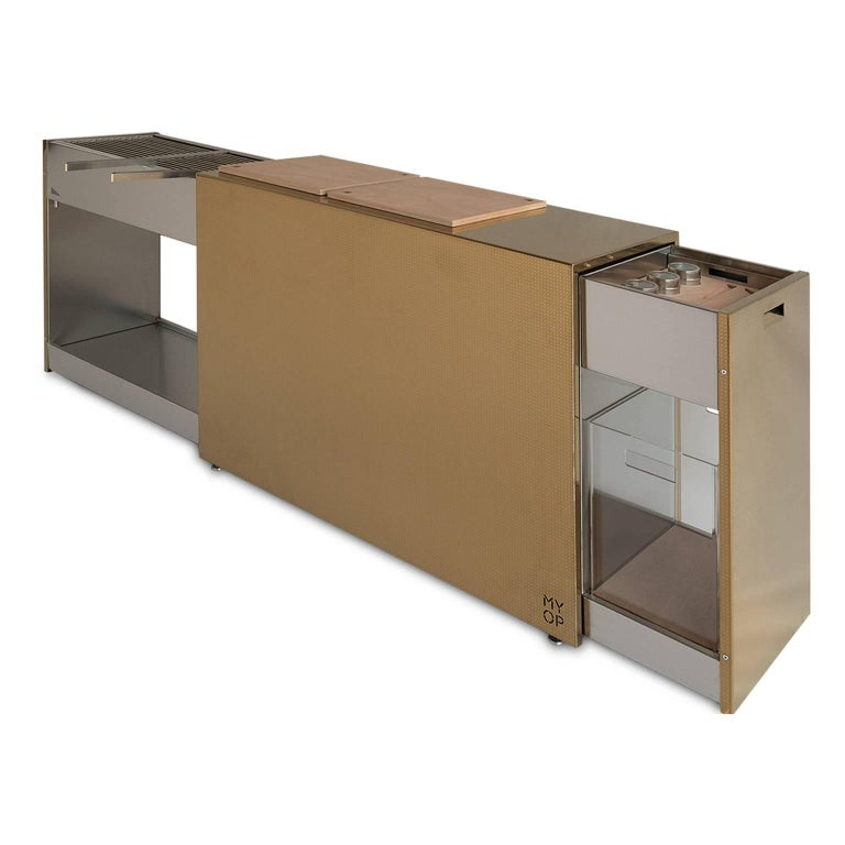 Brushed Charcoal BBQ with Cupboards and Extractable Grills, Snail Gold For Sale