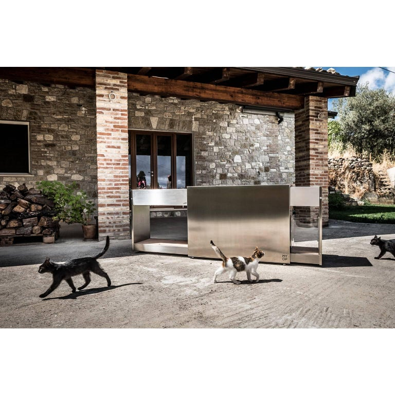 Contemporary Functional Outdoor Stainless Steel Charcoal Barbecue with Sliding Grills, Snail For Sale