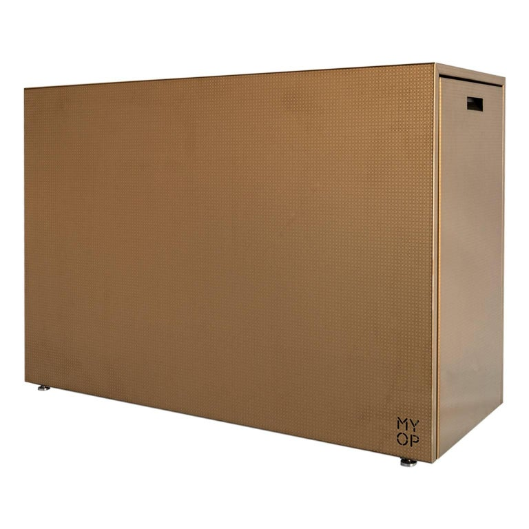 Charcoal BBQ with Cupboards and Extractable Grills, Snail Gold For Sale
