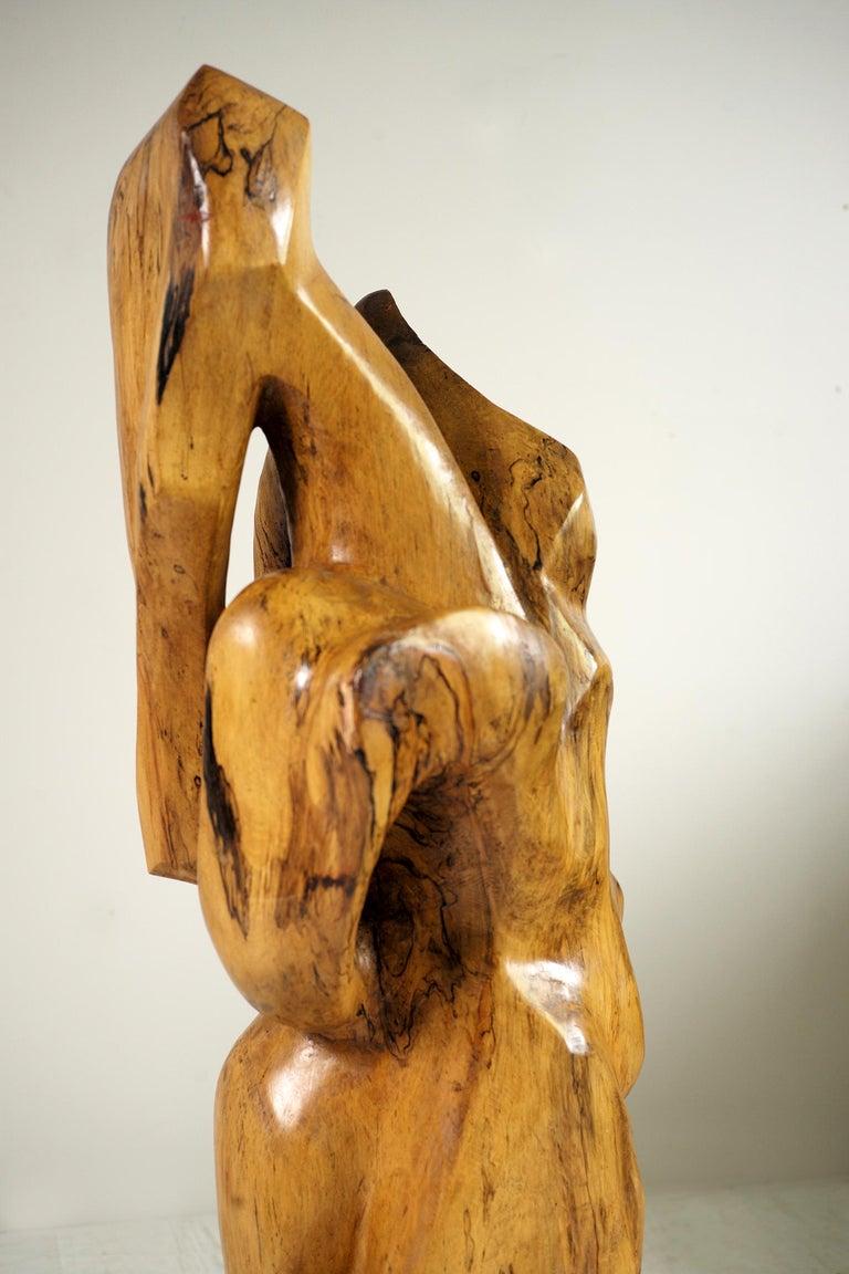 Sycamore Monoxyl Sculpture,