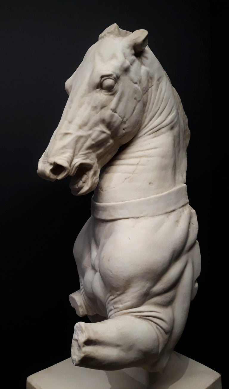 Monumental Continental Horse Sculpture In Good Condition For Sale In Dallas, TX