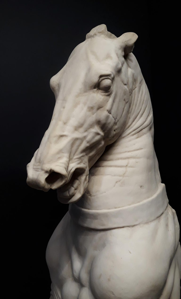 20th Century Monumental Continental Horse Sculpture For Sale