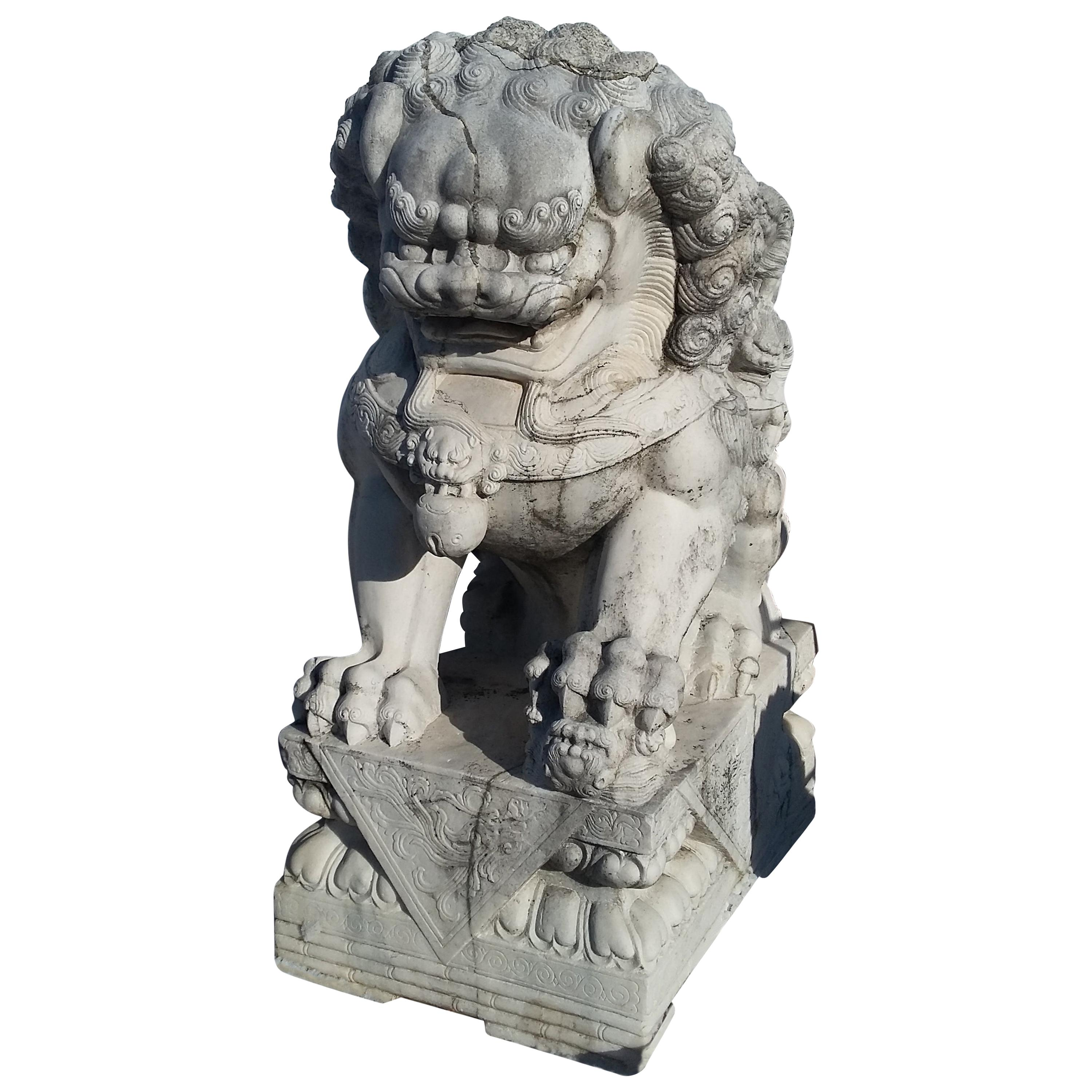 Monumental Carved Pair of Marble Foo Dogs from China