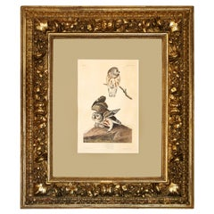 "Monumental Framed Audubon Print of ""The Little Owl,"" 1834 Havell Edition"