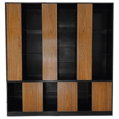 Monumental Harvey Probber Cabinet with Doors and Shelves with Alternating Woods