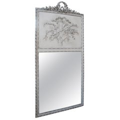 Louis XVI Floor Mirrors and Full-Length Mirrors