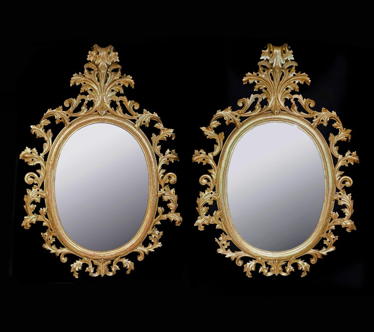 Monumental Pair of 19th Century Oval Florentine Carved Giltwood Mirrors For Sale 4