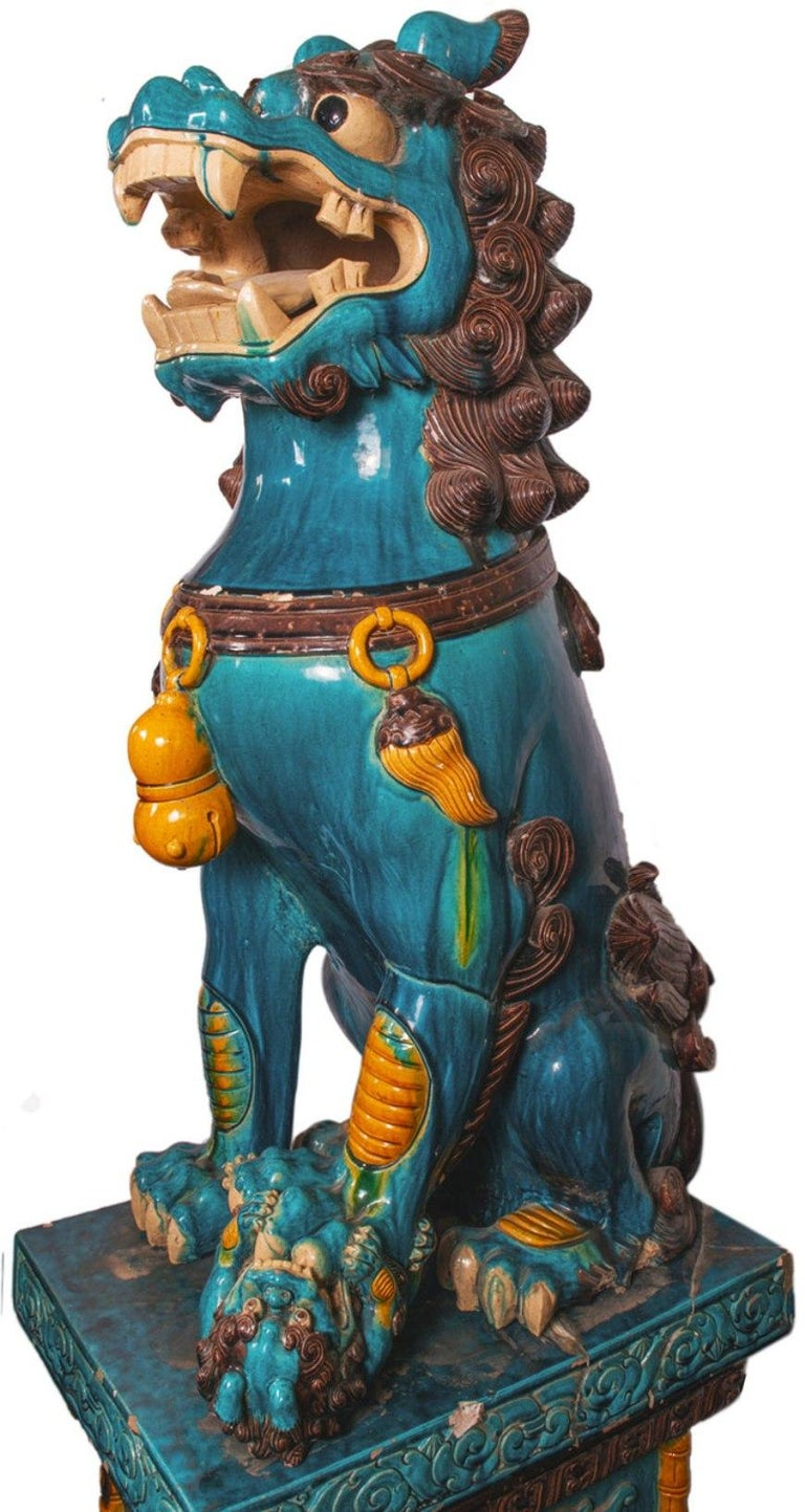 Chinese Export Monumental Pair of Early 20th Century Chinese Dog of Faux For Sale