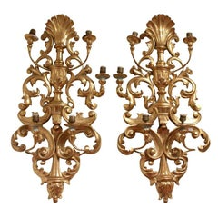 Monumental Pair of Giltwood Italian Wall Sconces