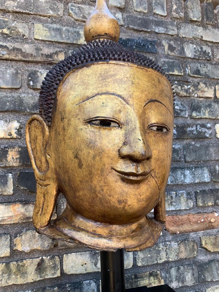 Monumental Shan Burmese Gilt Lacquer Buddha Head, Early 20th Century For Sale 6