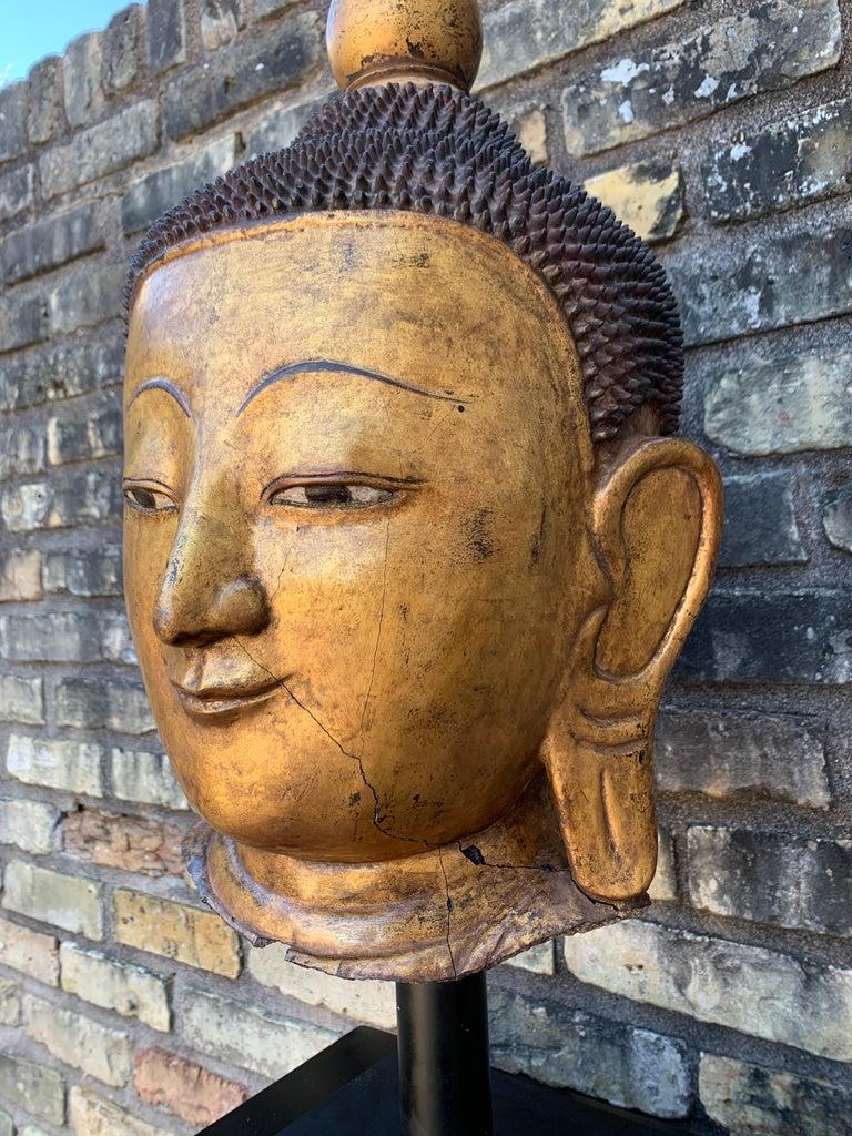 Monumental Shan Burmese Gilt Lacquer Buddha Head, Early 20th Century For Sale 7