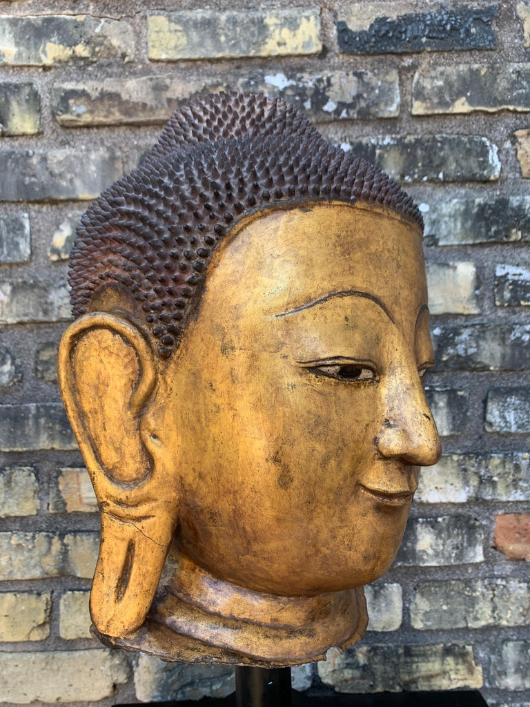 Monumental Shan Burmese Gilt Lacquer Buddha Head, Early 20th Century For Sale 8