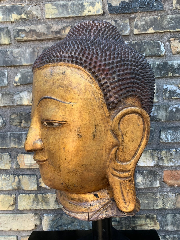 Monumental Shan Burmese Gilt Lacquer Buddha Head, Early 20th Century For Sale 9