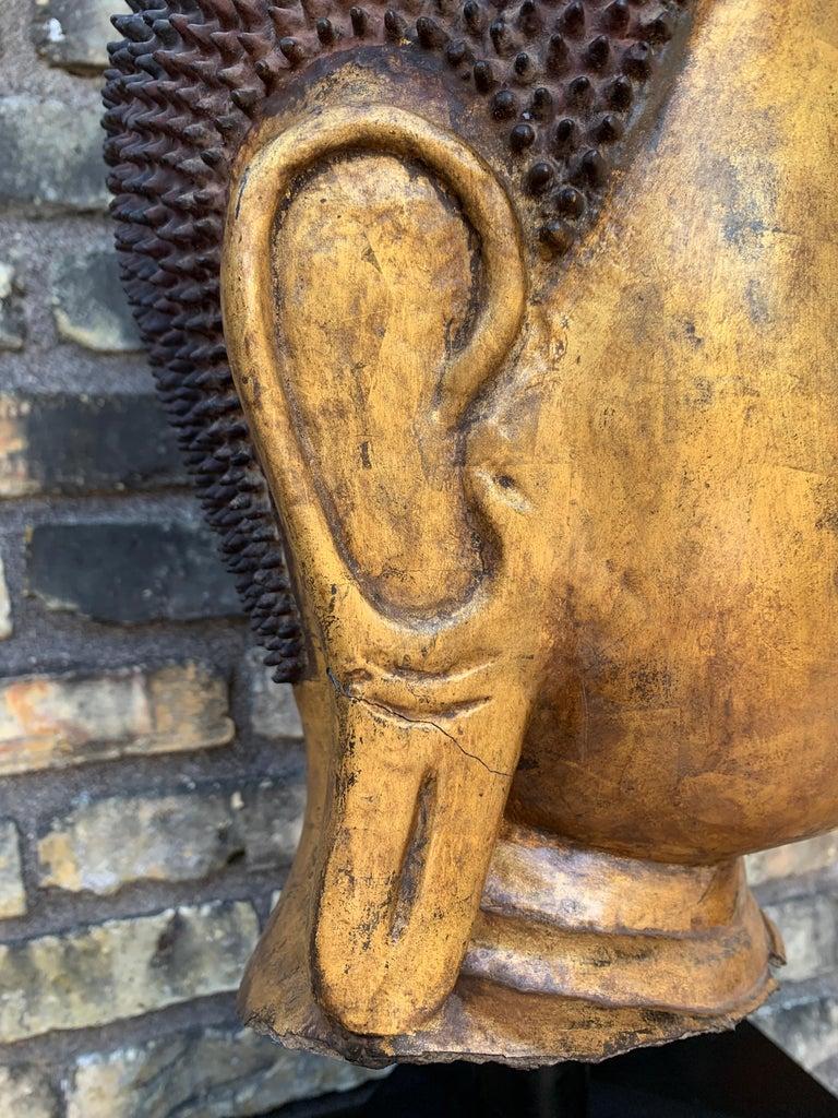 Monumental Shan Burmese Gilt Lacquer Buddha Head, Early 20th Century For Sale 11