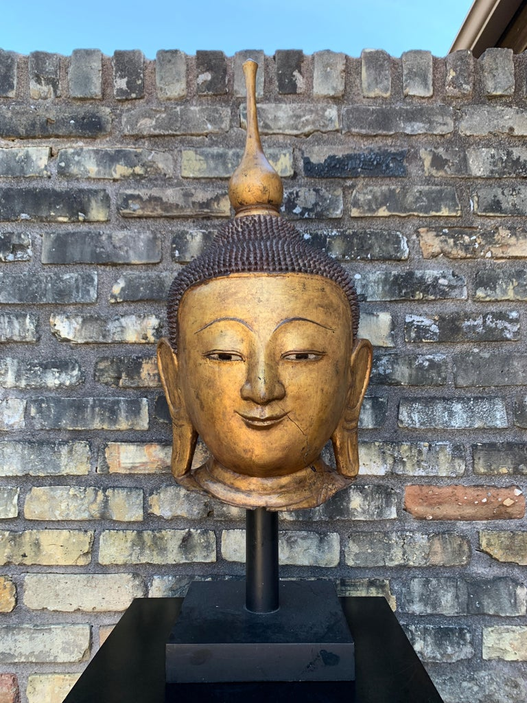 A Burmese gilt dry lacquer monumental head of the Buddha, Shan States, Myanmar (Burma), early 20th century.   This monumental dry lacquer and gilt head would originally have been part of a larger-than-life-sized statue of the Buddha.  The warm,