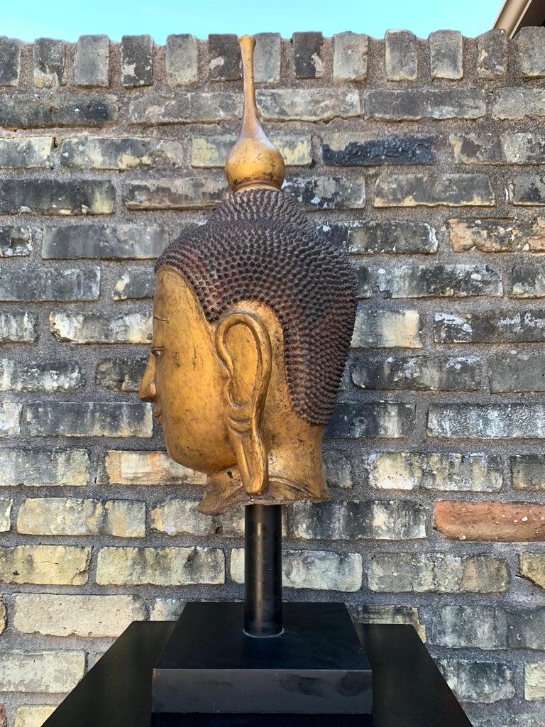 Monumental Shan Burmese Gilt Lacquer Buddha Head, Early 20th Century In Fair Condition For Sale In Austin, TX