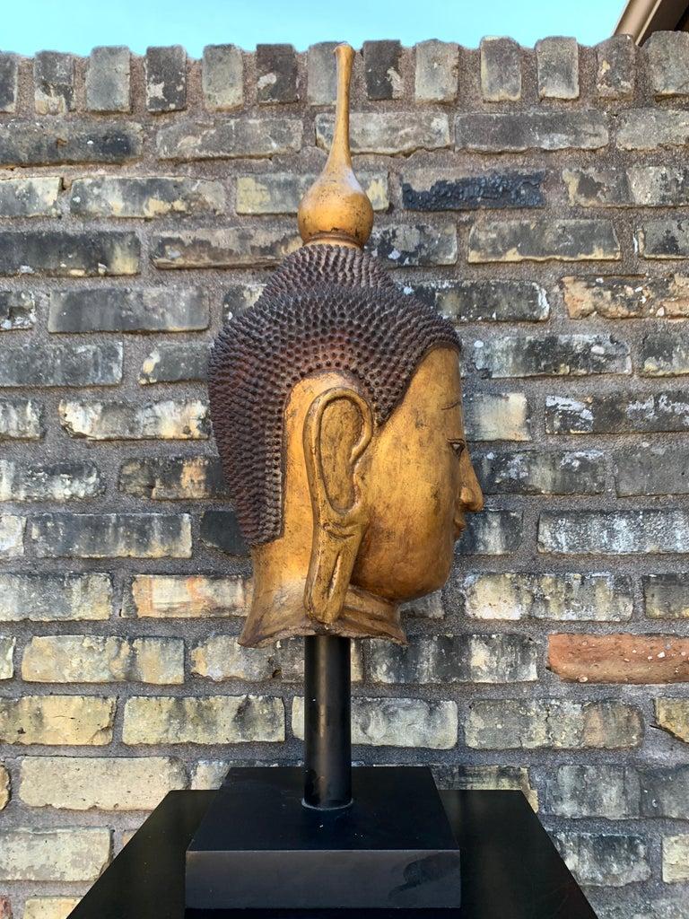Monumental Shan Burmese Gilt Lacquer Buddha Head, Early 20th Century For Sale 1