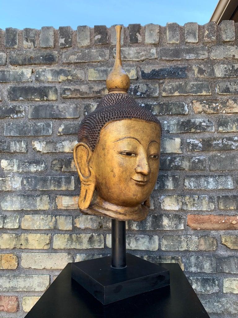 Monumental Shan Burmese Gilt Lacquer Buddha Head, Early 20th Century For Sale 2