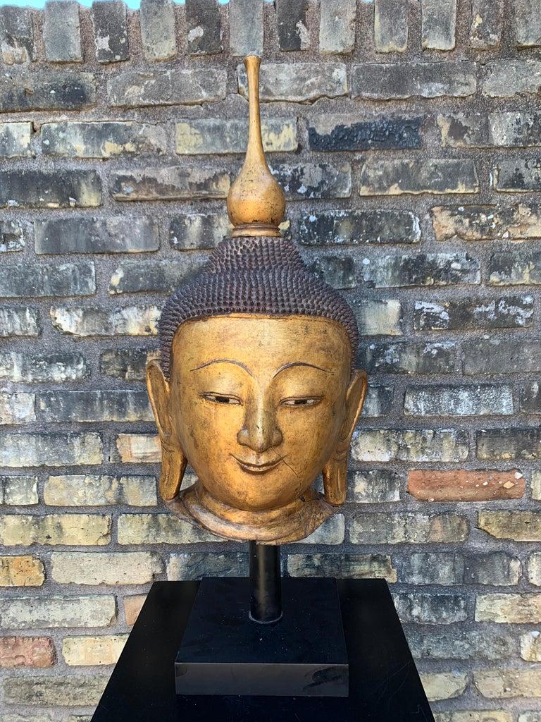 Monumental Shan Burmese Gilt Lacquer Buddha Head, Early 20th Century For Sale 3