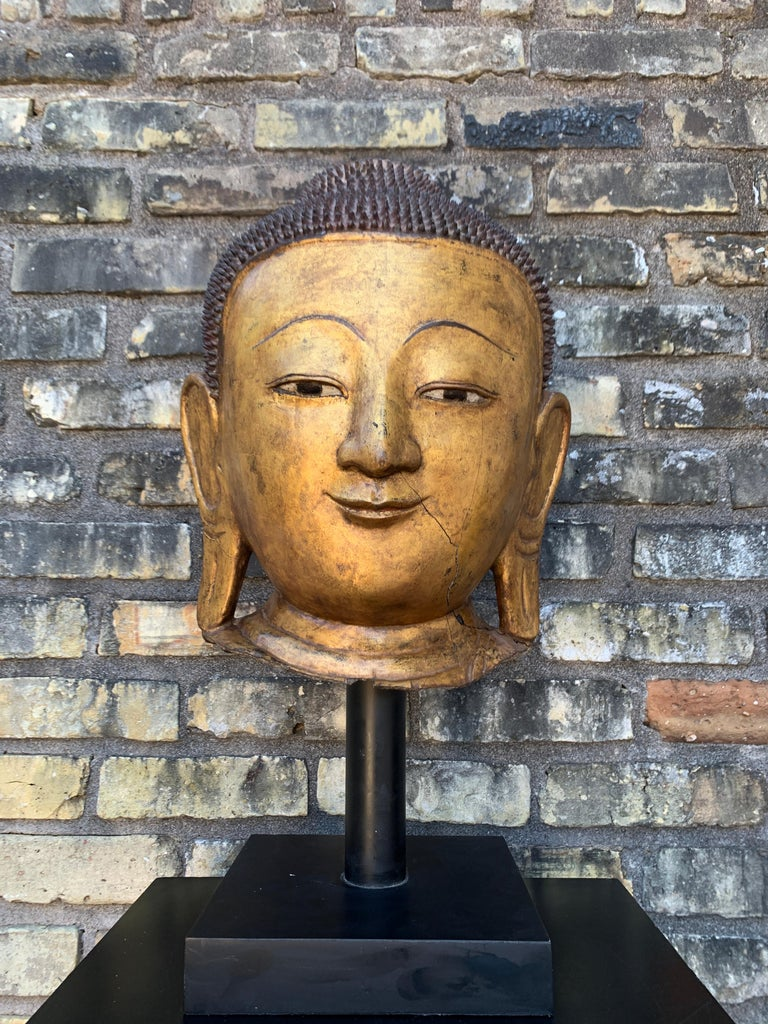 Monumental Shan Burmese Gilt Lacquer Buddha Head, Early 20th Century For Sale 5