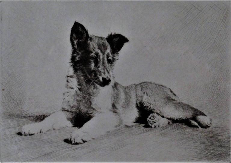 German Shepherd - Print by Morgan Dennis