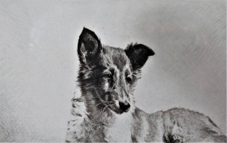 German Shepherd - American Realist Print by Morgan Dennis