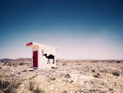 Camel Graffiti (Contemporary British Photography, Desert, Landscapes, Nature)