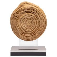 Moroccan Stromatolite on Acrylic Base