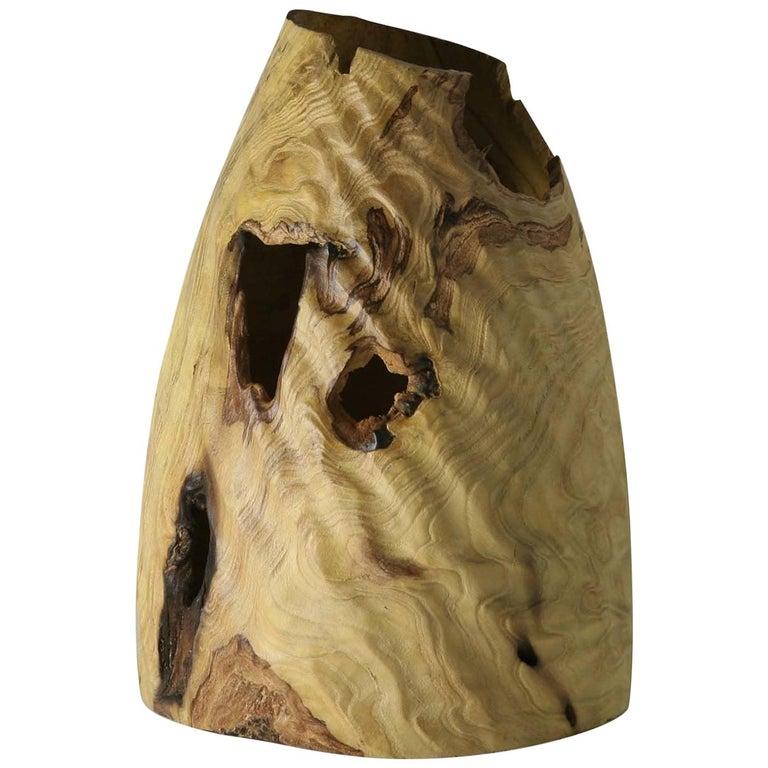 Morus Alba Vase For Sale