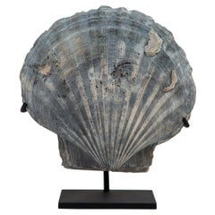 Mounted Fossilized Blue-Grey Pecten Shell