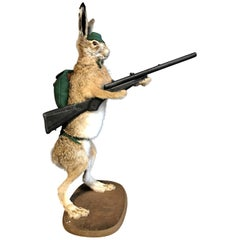 Mounted Taxidermy Hare with Rifle