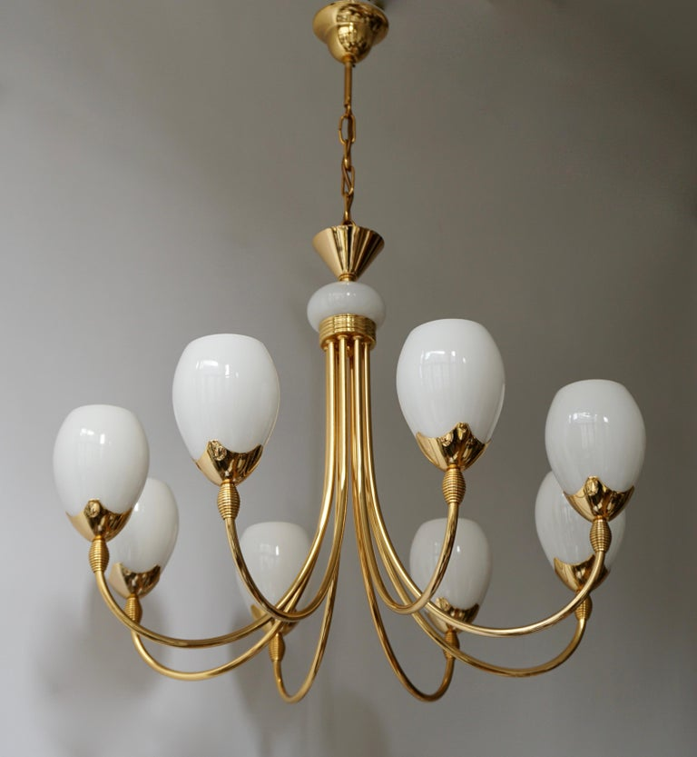 Italian Murano glass and brass chandelier with eight hand blown cups. Holds eight E14 candelabra base bulbs.
