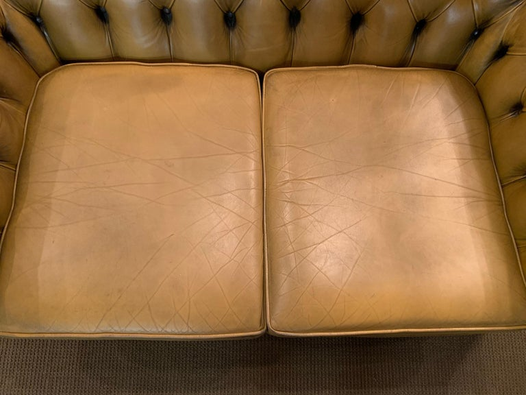 Mustard Yellow Leather Chesterfield Club Suite Armchair and Sofa For Sale 3