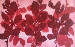 """Wild Witch Hazel 14"", abstract aquatint print plant study,  red, deep magenta."
