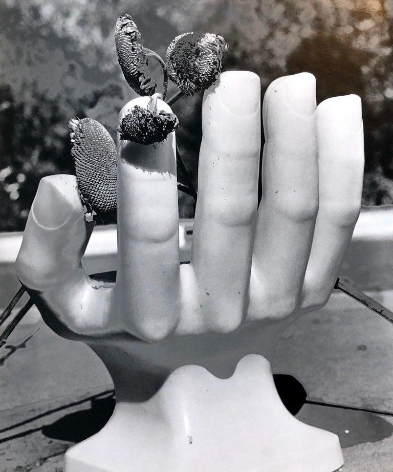 Naomi Savage Still-Life Photograph - Photo Of Pedro Friedeberg Hand Chair Vintage Silver Gelatin Photograph