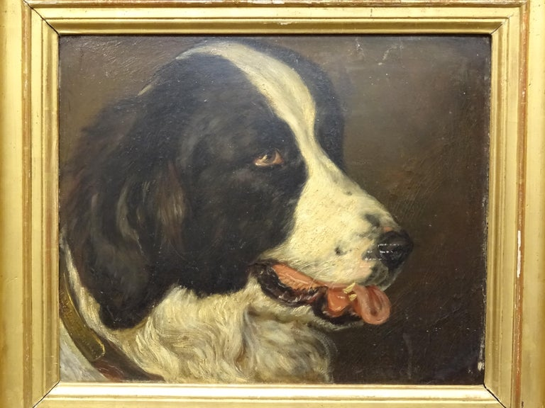 Gorgeous portrait chien by León-Charles Audienne, Epernay France. It's a beautiful oil on wood, signed on the dog collar and framed in old and his original frame in carved and gilded wood. Behind the painting there is a label of the place where it