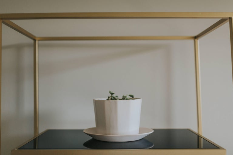 Native Planter Black Succulent Planter Modern Contemporary Glazed Porcelain For Sale 7