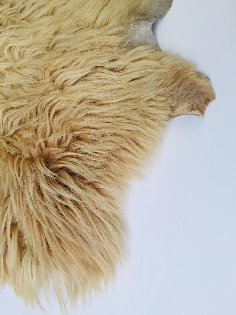 Folk Art Natural Angora Plush Sheepskin Accent Rug