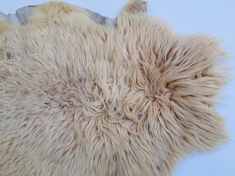 Natural Angora Plush Sheepskin Accent Rug 1
