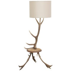 Natural Antler Deer Horn Floor Lamp
