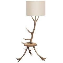 Natural Antler Deer Horn Floor Lamp