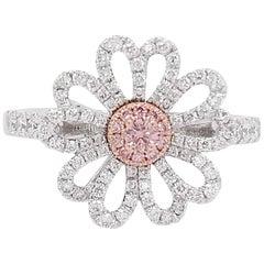 Natural Argyle Pink Diamond in Platinum and 18 Karat Pink Gold Cocktail Ring