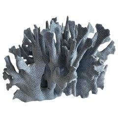 Natural Blue Coral