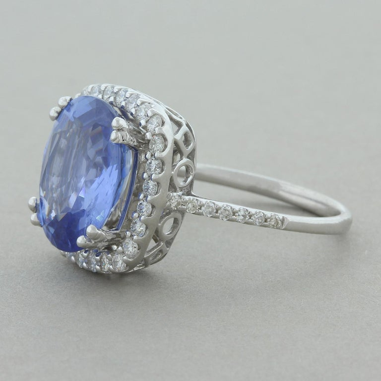 This ring features a natural 4.33 carat gem blue sapphire. The sapphire is certified as being unheated and untreated, less than 5% of stones mined stay untreated. It is haloed by round brilliant cut diamonds which also run along the shoulders on the