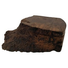 Natural Form Burl Wood Box