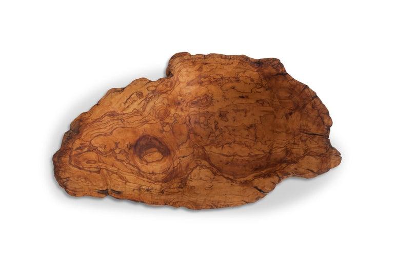 European Natural History Wabi Sabi Olivewood Bowl or Sink For Sale