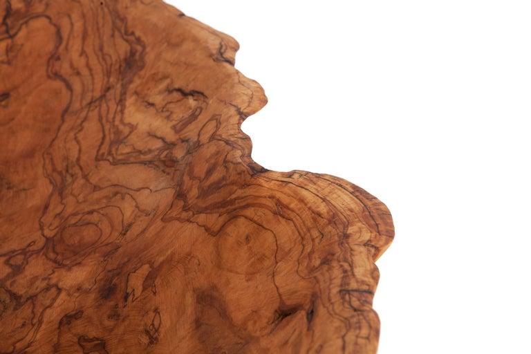 Natural History Wabi Sabi Olivewood Bowl or Sink For Sale 2