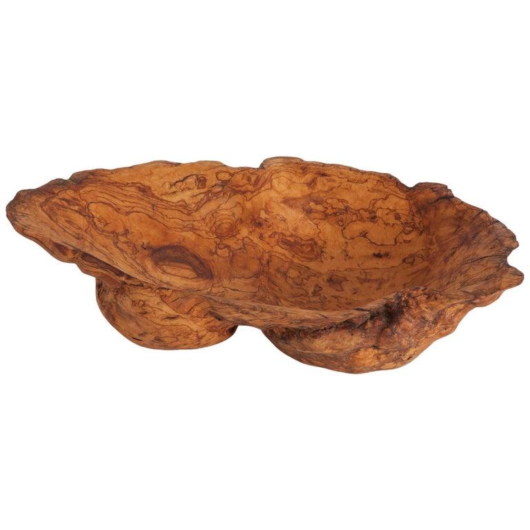 Natural History Wabi Sabi Olivewood Bowl or Sink For Sale